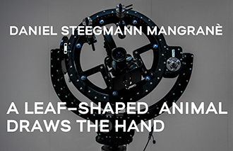 04 Daniel Steegmann Mangrané A Leaf Shaped Animal Draws The Hand